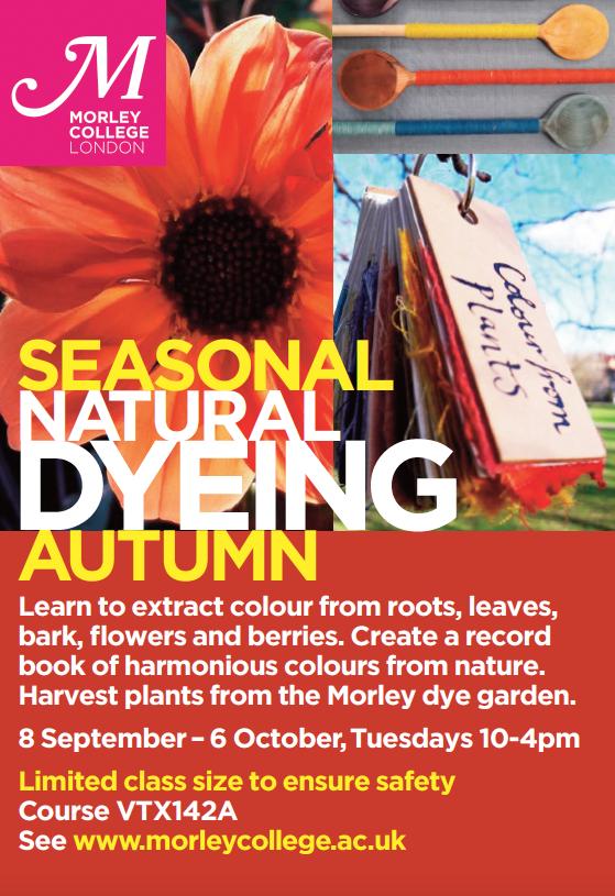 Autumn Natural Dye Workshop
